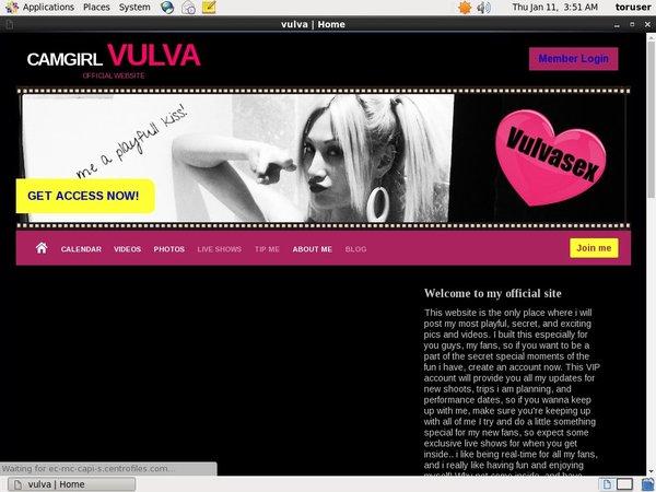 Vulvasex.modelcentro.com 사용자 이름